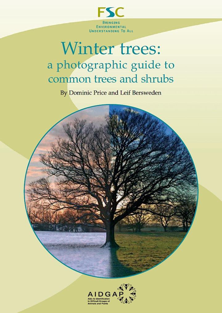 Winter Tree ID  2021 ONLINE image