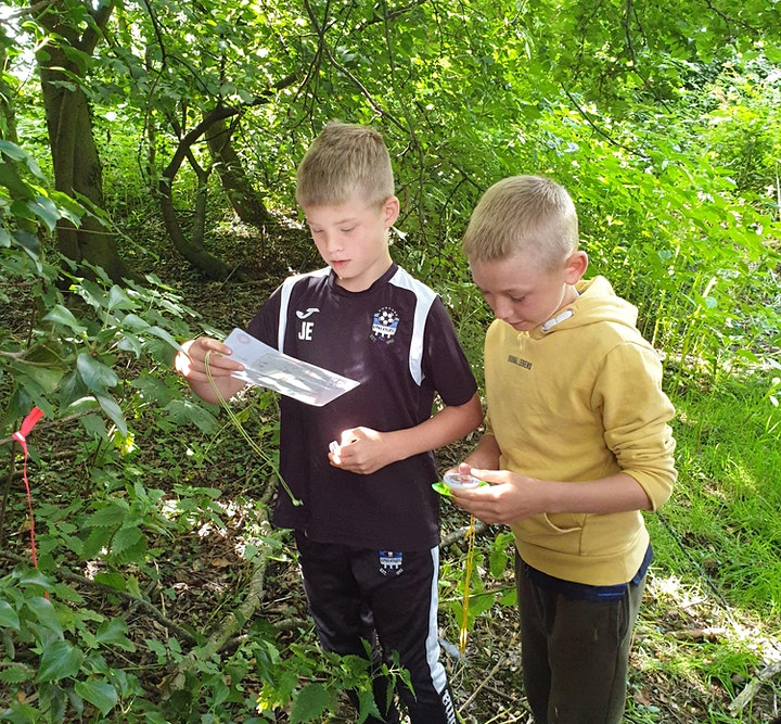 Nature Study and Outdoor Club at Temple Newsam (6-11 year olds) image