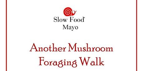 Mushroom Foraging Walk - Slow Food Mayo tickets