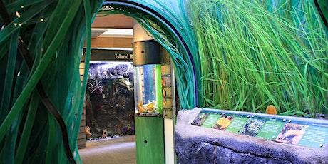 Aquarium Quick Dips tickets