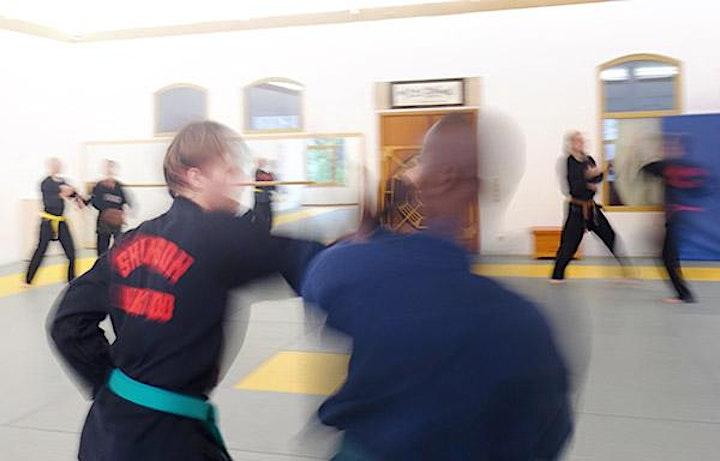 Kampfkunst-Training  für Anfänger*innen: Bild