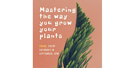 Mastering The Way You Grow Your Plants Is Not An Accident - It's A Skill tickets
