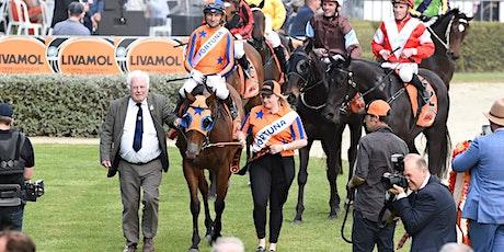 Livamol Classic - Bostock New Zealand Spring Racing Carnival tickets