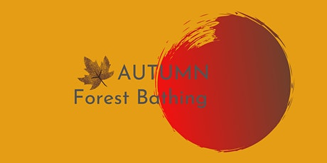 Autumn Forest Bathing tickets