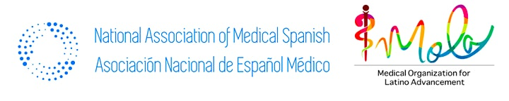 Second Medical Spanish Summit (2MSS) image