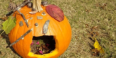 Fairy Pumpkin House Workshop tickets