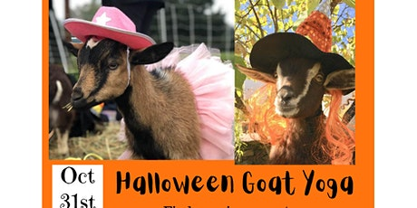 Halloween Goat Yoga on the Farm tickets
