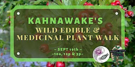 Kahnawake Wild Edible & Medicinal Plant Walking Tour tickets