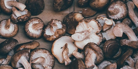 Grow Your Own Mushrooms *In-Person* tickets