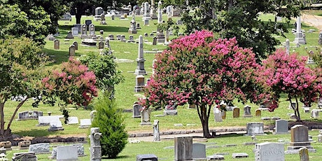 Tree Tour of Elmwood Cemetery tickets