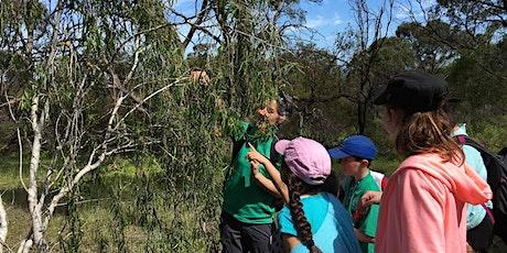 Bush Habitats  with 'The Bush Classroom' tickets