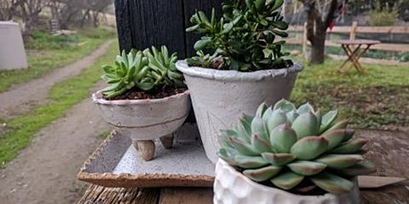 Boho Planters and Trays PRIVATE group for Lindsey tickets