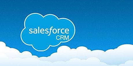 4 Weeks Salesforce Developer Development Training in Christchurch tickets