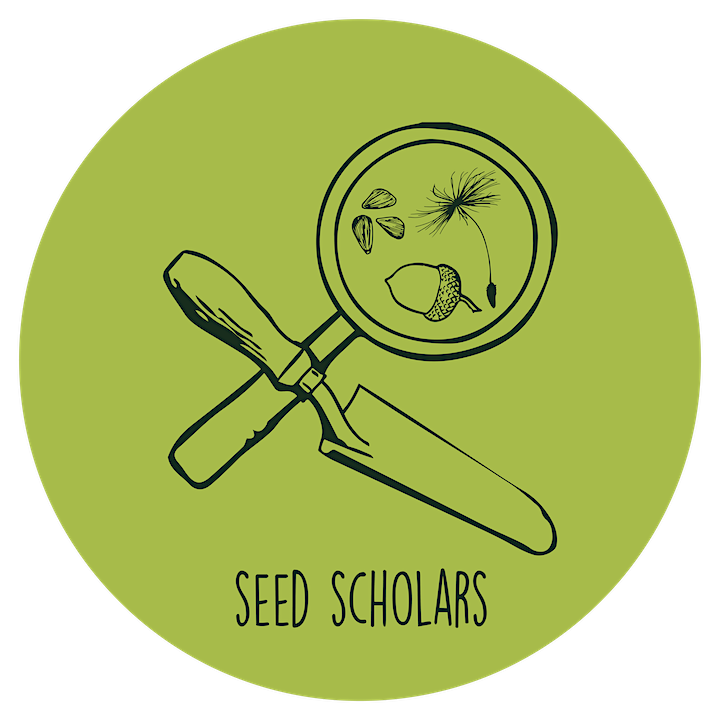 Gather and Grow - Exploring our Roots with Seed Scholars' Forest Sessions image