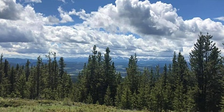 Intermediate Guided Hike- Blue Hill Fire Lookout tickets
