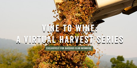 Vine to Wine: A Virtual Harvest Series tickets