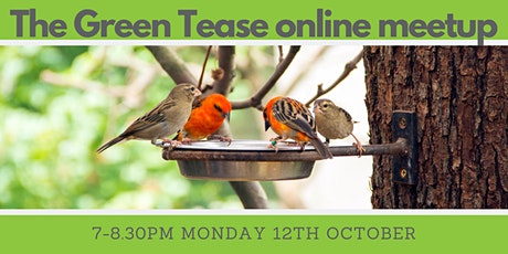 Green Tease October Meetup tickets