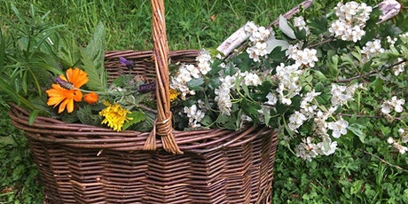 Foraging, Wild Foods and Herbal Extractions tickets