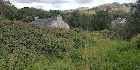 Tentergarth meadow restoration event involving practical conservation work tickets