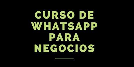 Curso Online de Whatsapp para Negocios entradas
