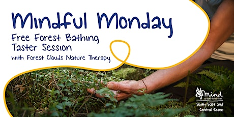 Free 'Mindful Monday' Forest Bathing Session tickets