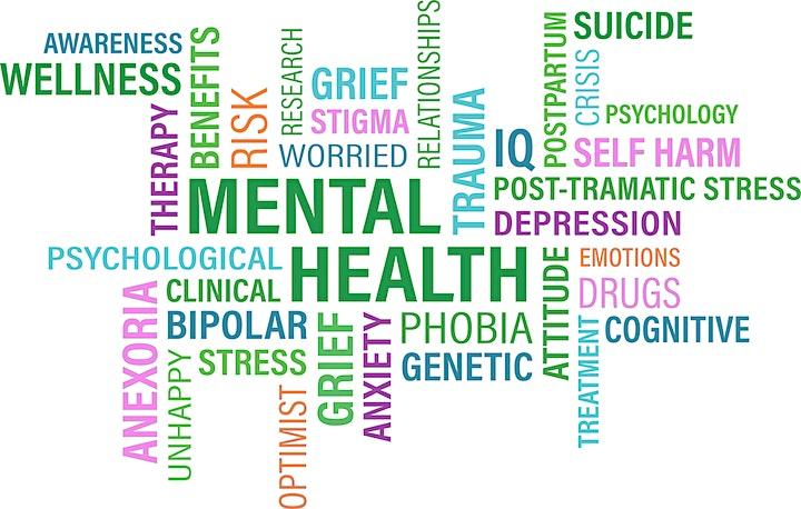 HealthierJC Mental Health First Aid - Online Class 7/14/2021 -SOPHE image