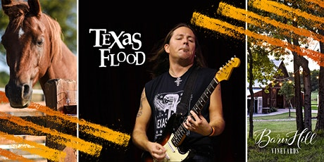 Stevie Ray covered by Texas Flood - Great Texas Wine and HUGE skies! tickets