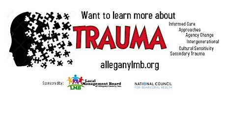 Culturally Sensitive Trauma Inf Care (Influence  Culture on Trauma)-inClass tickets