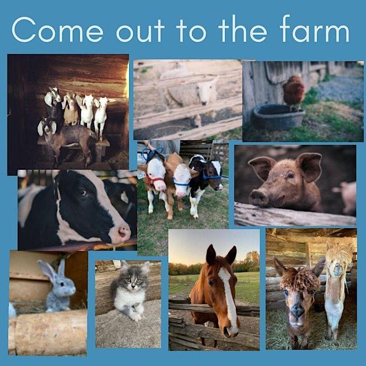 Barnyard Fun image