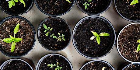Gardening Workshop, adults tickets