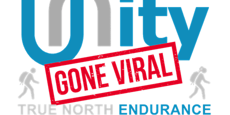 Unity Gone Viral tickets