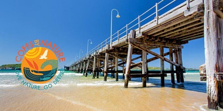 Coffs By Nature - Turtle Watch Session tickets
