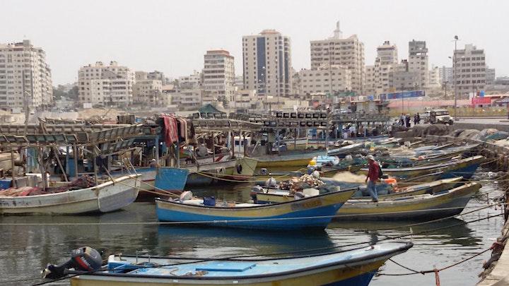 Still Lives:  A Memoir of Gaza by Marilyn Garson image