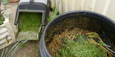 Webinar - Worm farming and composting workshop -  Nov 2020 tickets