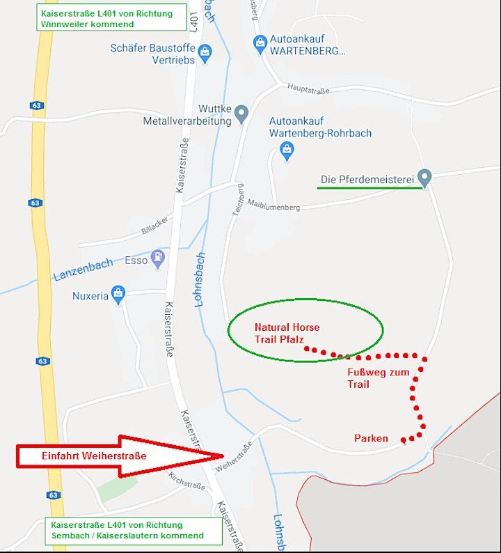 Einführungskurs Natural HorseTrail - Pfalz: Bild