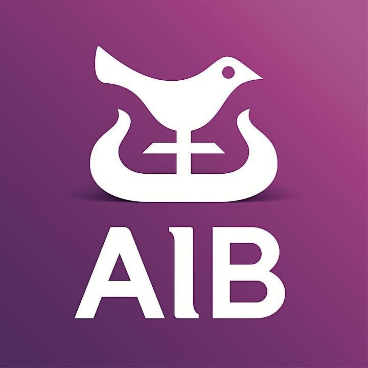 Network Ireland National Virtual Conference & Awar image