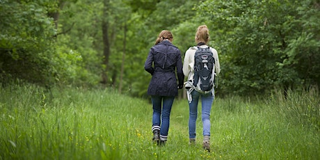 Wild Walks @ Bubbenhall Wood and Meadow Nature Reserve (18+) tickets