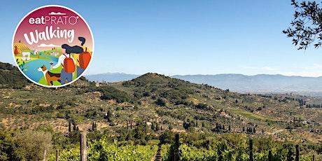 Prato&Vino. Trekking sulla Via Medicea, visita e ristoro Colline San Biagio biglietti