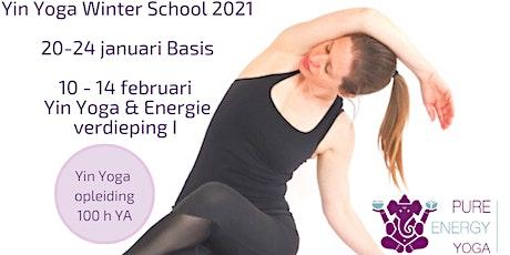Online Yin Yoga training Utrecht (50h YA) Basis tickets