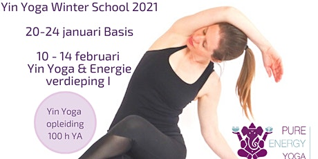 Yin Yoga training Utrecht (50h YA) Yin Yoga & Energie tickets