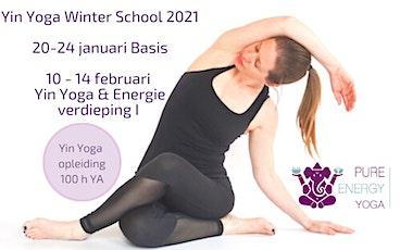 Yin Yoga opleiding Utrecht (50h YA)  Yin Yoga & Energie module tickets