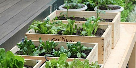 Container Gardening with Dr. Paul tickets