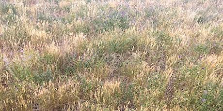 South Perennial Pasture Rejuvenation tickets