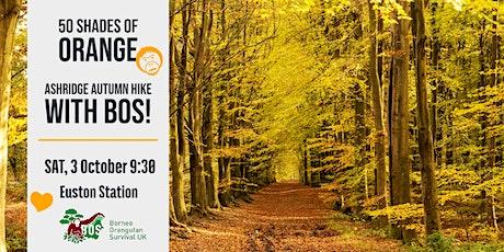 50 Shades of Orange - Ashridge Autumn Hike with BOS! tickets