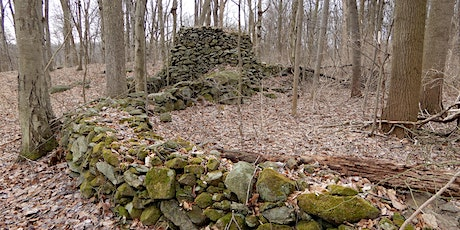 Tap Talk - The Mystery of Ceremonial Stone Landscapes in our Watersheds tickets