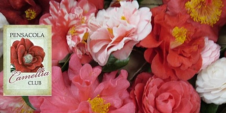 Pensacola Camellia Club Monthly Meeting tickets