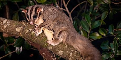 NaturallyGC Facebook Live- Wildlife Encounter tickets