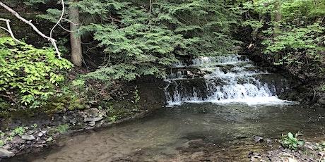 Upper Twelve Mile Creek Watershed Planning tickets