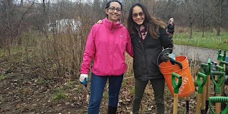Foundry Park Fall Native Tree and Shrub Planting tickets