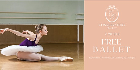 TWO WEEKS FREE Live Ballet Class - DE Open Level (ages 12+) tickets